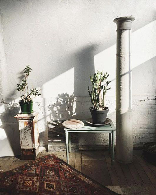 moroccan area rug and potted plants. / sfgirlbybay