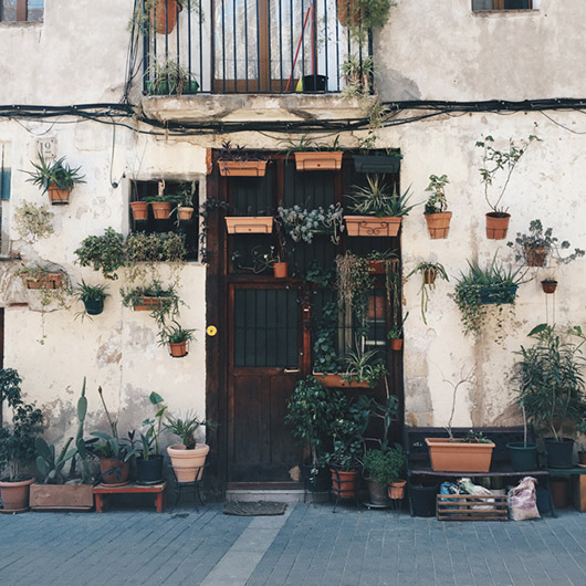 european home exterior with planters. / sfgirlbybay