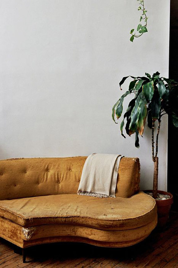 vintage yellow sofa with houseplants. / sfgirlbybay