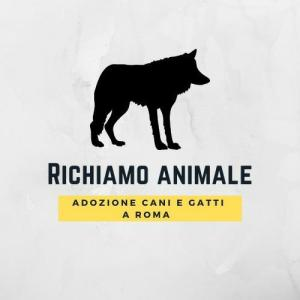 richiamo animale