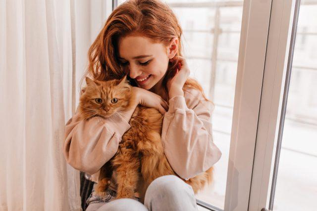 sei un vero gattaro