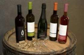 vin belge Vin belge : Oufti purée, quelle cuvée !