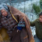 Indian Horse Review Movies Santa Fe Reporter