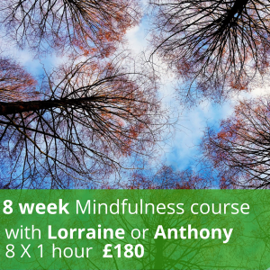 8 Week Mindfulness