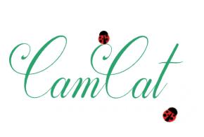 camcat publishing