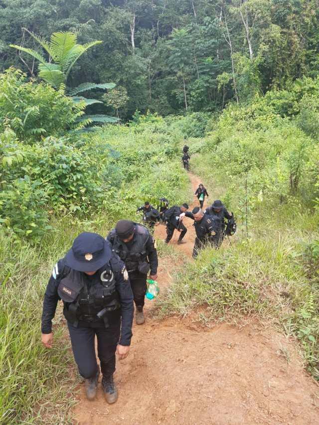 Acceso hacia el cultivo de coca
