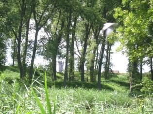 Rundgang Sluis mit Belfried