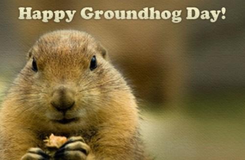 Groundhog Day 2016