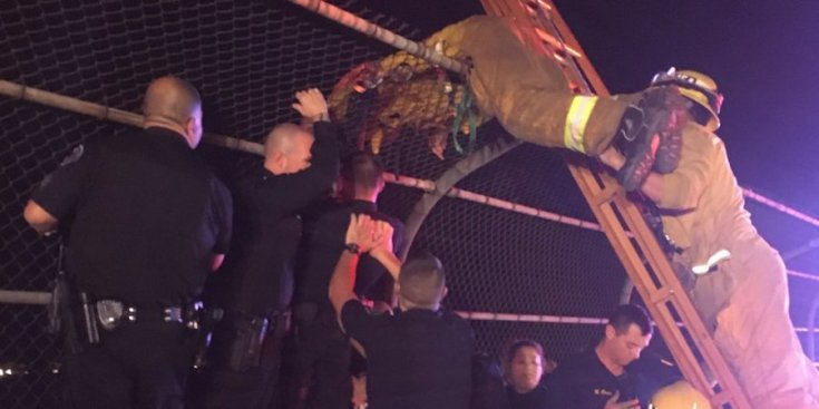 Azusa Police, Los Angeles County firefighters and Azusa resident Joseph Beltran rescued a despondent girl from an overpass on the 210 Freeway in Azusa on Monday. (Courtesy, Azusa Police Department)