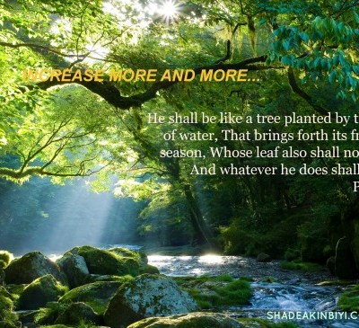 Deeply Rooted In Christ