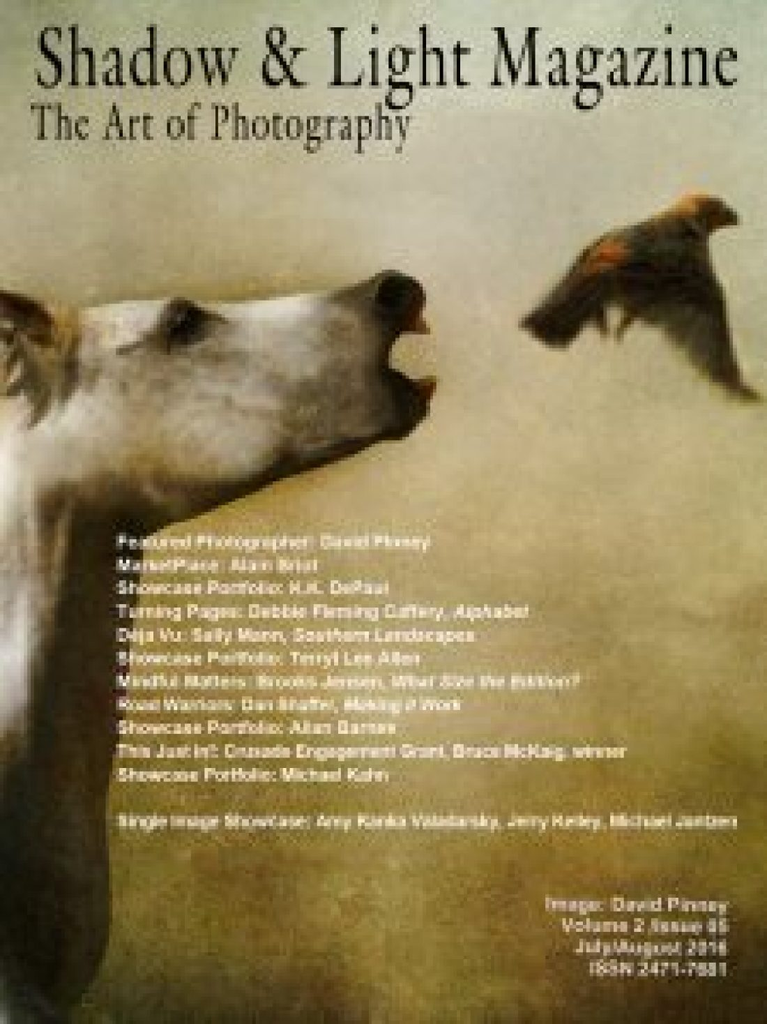 david pinney photography and shadow light magazine