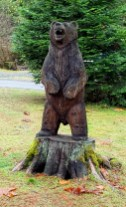 We didn't see any real bears but this guy hung around all month