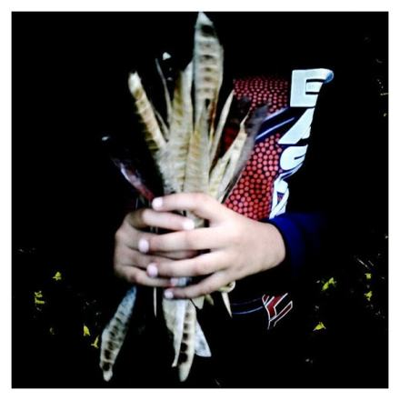 gy holds sticks