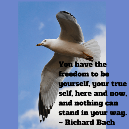 #RichardBach #Quote #Jonathan #seagull