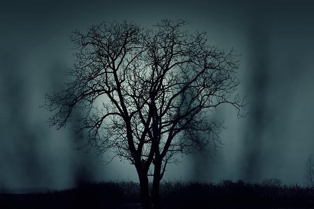 The woods are dark #Microfiction