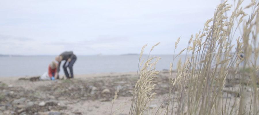 Edinburgh Shoreline Interview Wardiebay Video Community