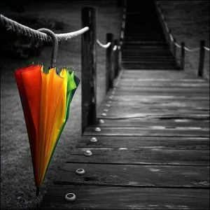 Umbrella Hanging On Rope Bridge Photo