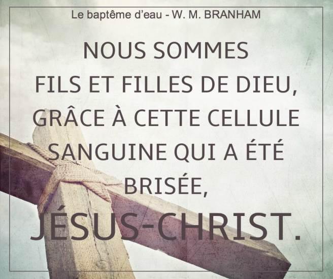 Nous sommes fils et filles de Dieu, Grâce à cette cellule sanguine qui a été brisée, Jésus-Christ