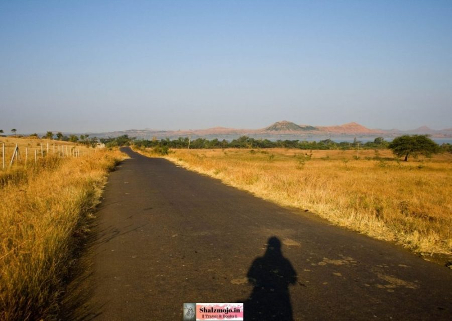 on the road between vineyards in Sula country Nasik