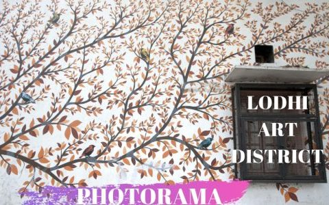 Lodhi Art District - Lodhi colony - artists - st+art - street art - NGO - New Delhi - photowalk