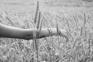 arm moving through wheat