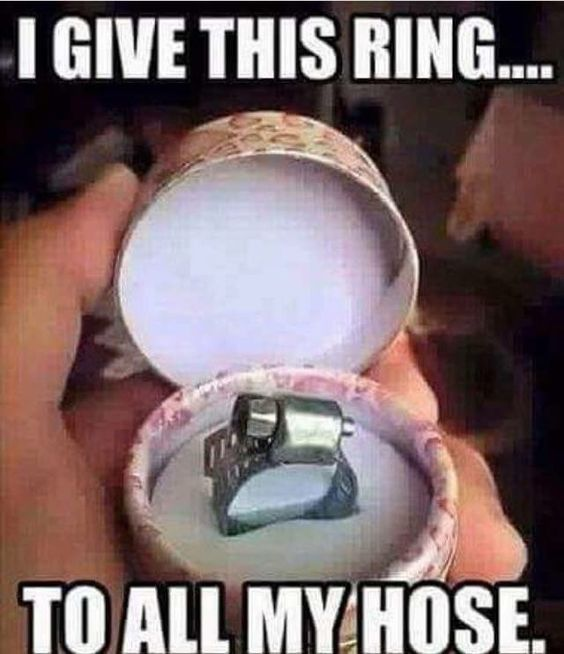 """Meme of a plumbing hose ring in a box with the text """"I give this ring...to all my hose""""."""