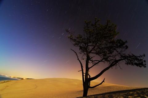 Dune du Pila by night