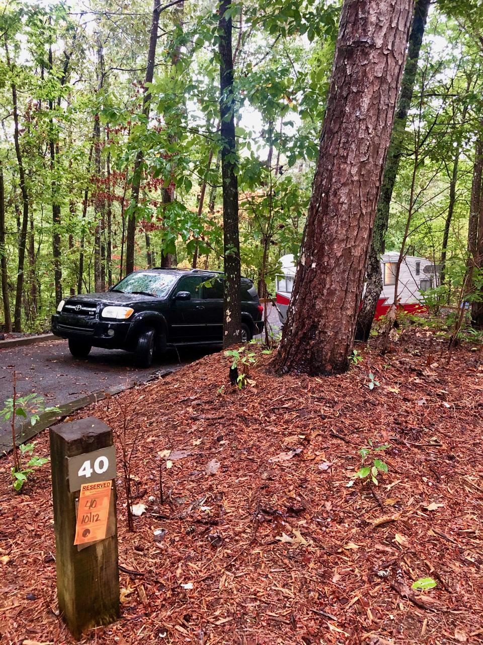 Campsite-at-Doll-Mountain-Campground