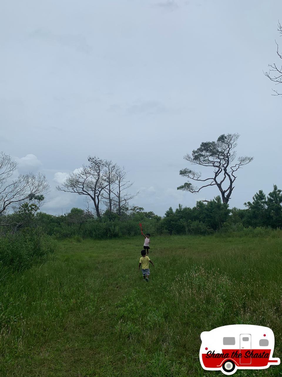 Catching-Dragonflies-on-Assateague