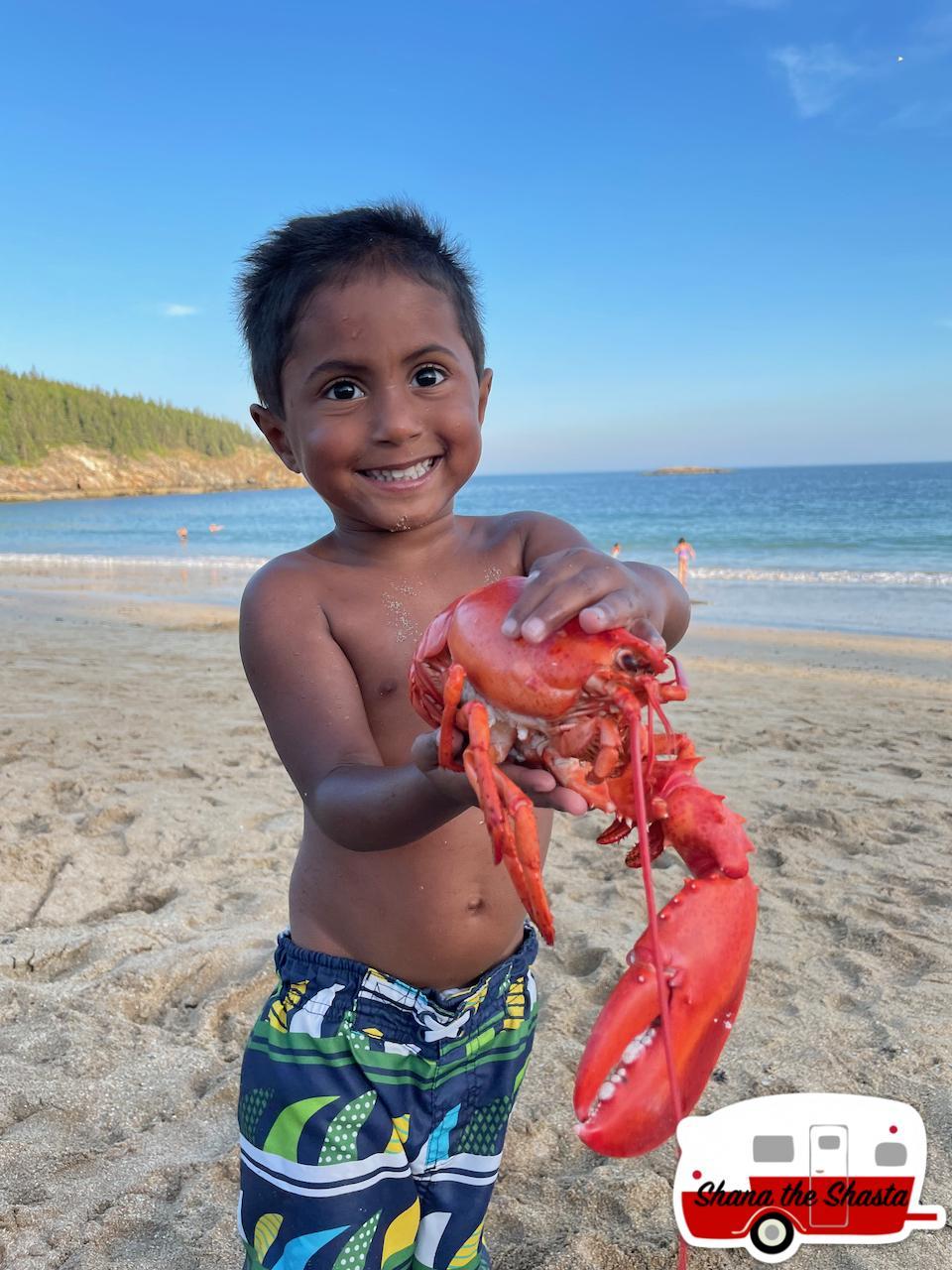 Caught-a-Lobster-on-Sand-Beach