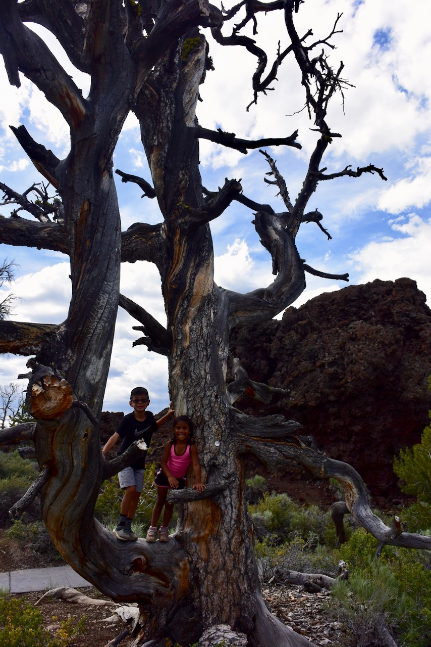 Craters-of-the-Moon-Deadwood