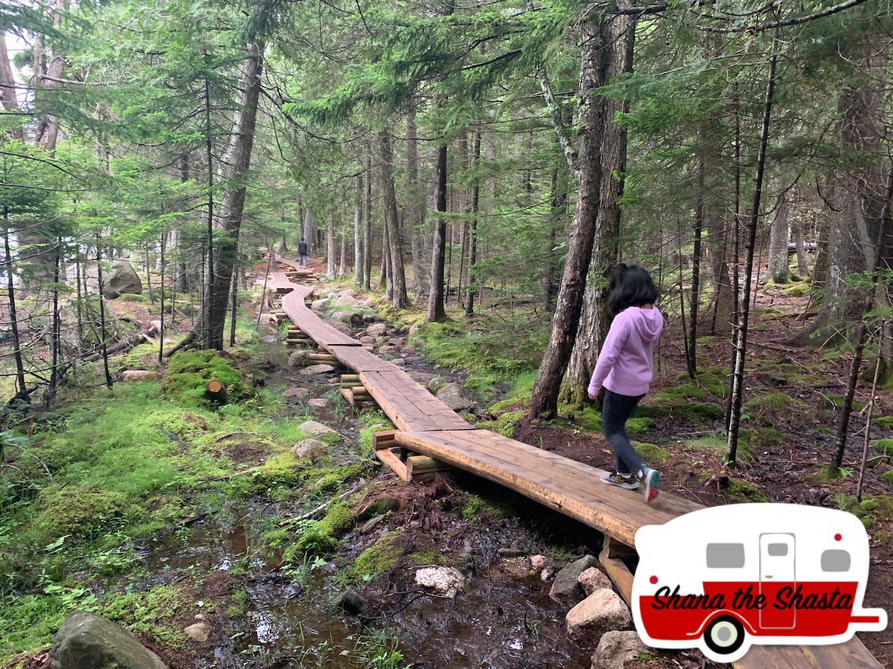 Split-Timber-Path-Around-Jordan-Pond