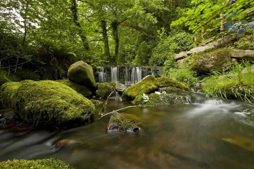 Glencomeragh – Carrick Camera Club Shoot
