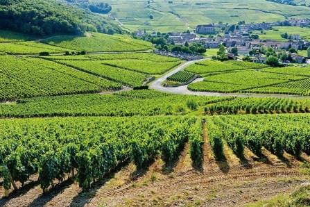 Bordeaux - Fransa