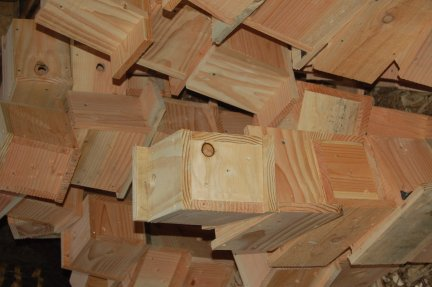 Larch bird boxes