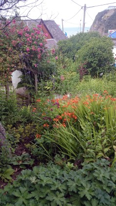 A natural planting scheme well suited to the coastal situation in this coastal garden.