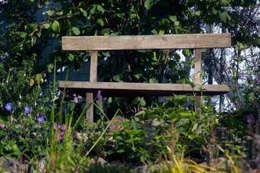 oak bench, wildlife trust