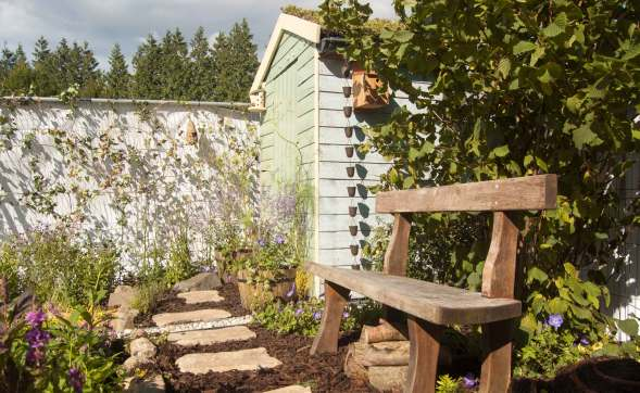 wildlife garden, Bute Park Cardiff, My Wild Garden, Wildlife Trust, oak bench