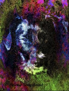 Dog Symbolism and Folklore