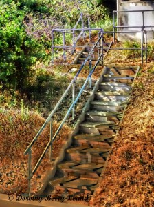 Stairways and Steps