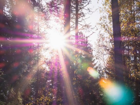 sunscreen-toxicity-sunlight-patrick-selin-shannon-dunn