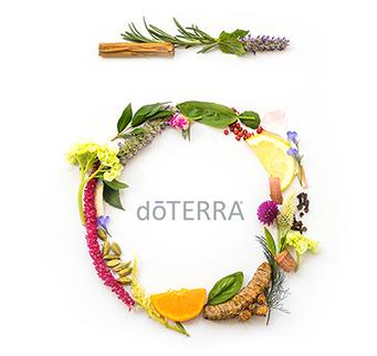where do you buy doterra essential oils