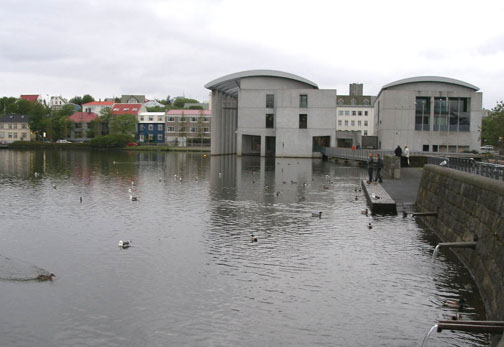 Tjörnin, the pond in the center of Reykjavík, attracts many species of ducks and other birds.