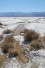 Cottonball Basin Salt Flats