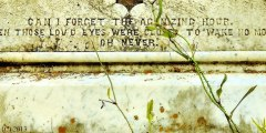 My Fauxtography: Cemeteries: Gallery One