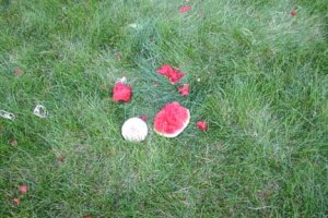 Exploding watermelon- the rubber bands end up in a tight ball