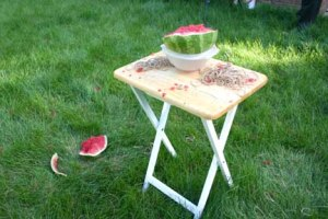 Exploding a watermelon- pieces fly and make a mess