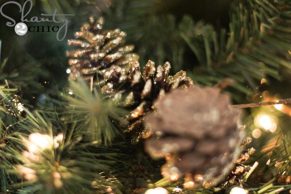 pine-cone-stems