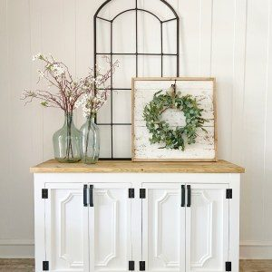 DIY-Fancy-Door-Cabinet-by-Shanty2Chic