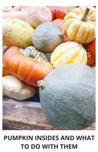 Pumpkin insides to be used after carving